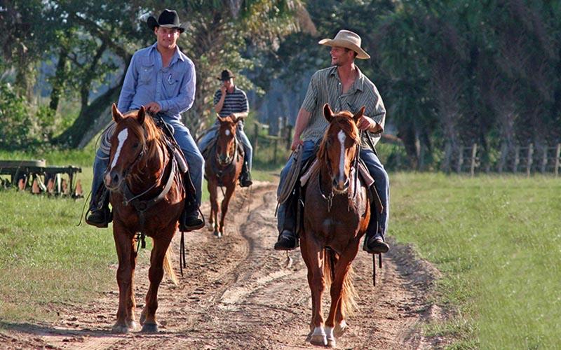 cowboys3